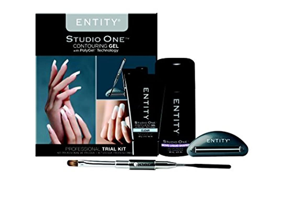 薄いです偉業藤色Entity - Studio One - Contouring Gel Professional - PolyGel Trial Kit