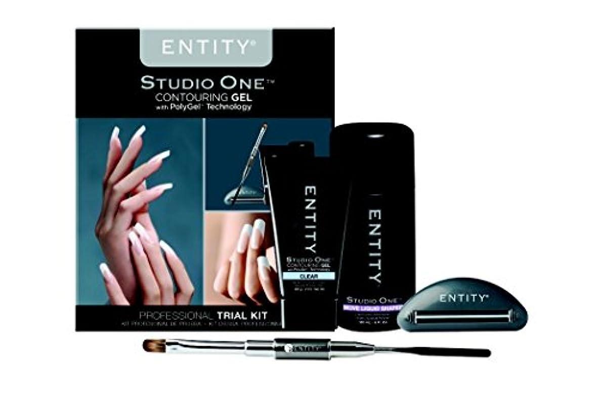浅いバレルナサニエル区Entity - Studio One - Contouring Gel Professional - PolyGel Trial Kit
