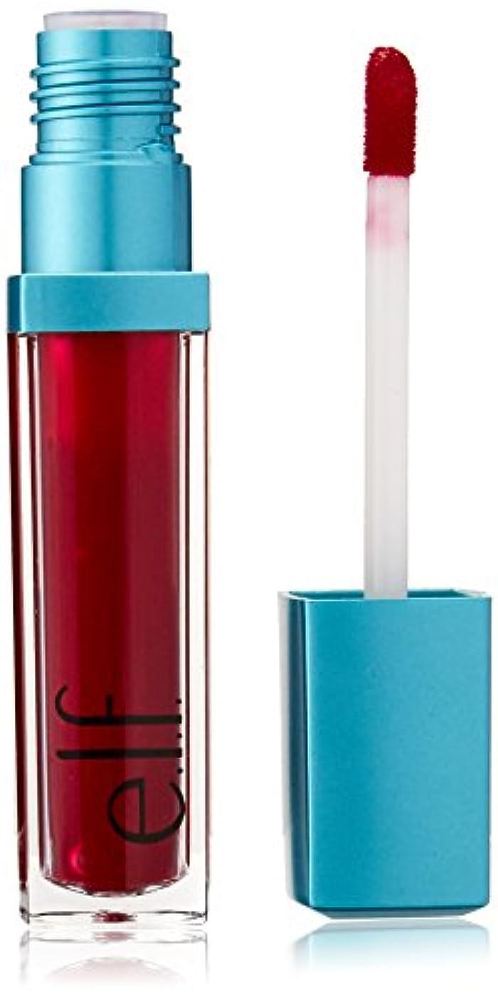追加姿を消す美人e.l.f. Aqua Beauty Radiant Gel Lip Stain - Dewy Berry (並行輸入品)