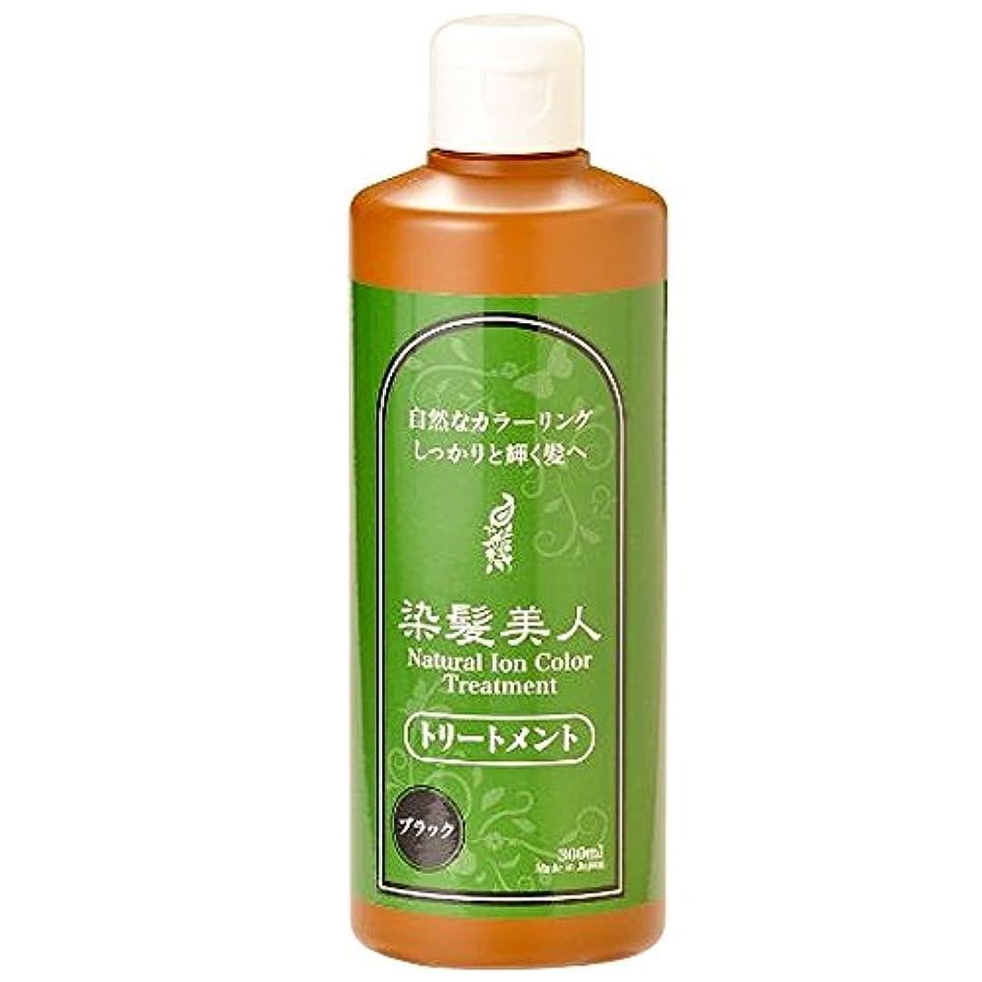 ピザエンターテインメントアブストラクトモデム 染髪トリートメント 300ml ブラック