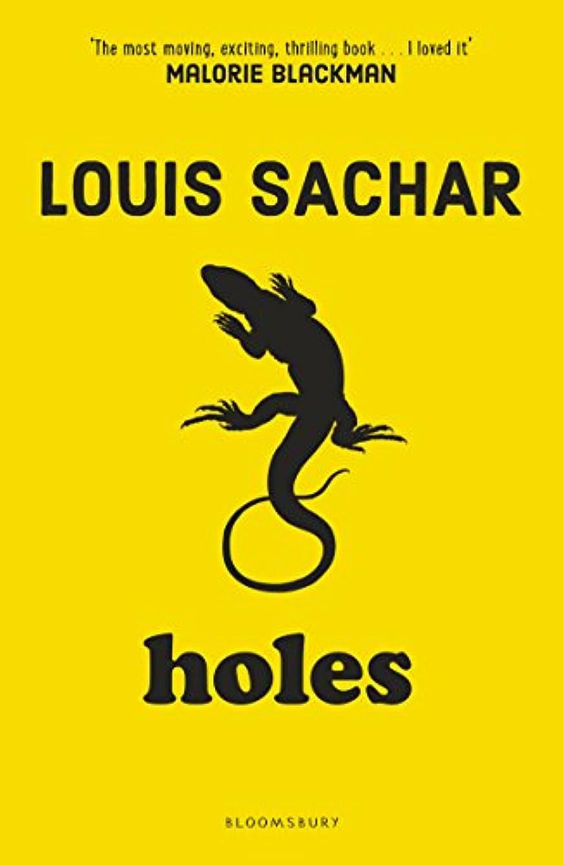 試験免疫する画家Holes (English Edition)
