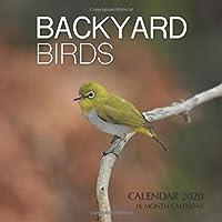 Backyard Birds Calendar 2020: 16 Month Calendar