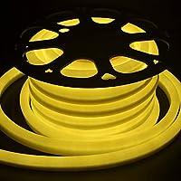 30M LEDネオンロープライト、屋内/屋外アンビエント照明装飾や商業照明の使用、防水、アクセサリー用AC110V調光対応LEDネオンフレックスストリップライトが含まれています (黄)