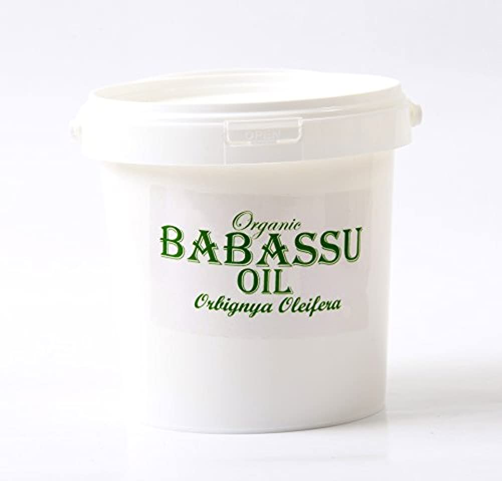 Mystic Moments | Babassu Refined Organic Carrier Oil - 1Kg - 100% Pure