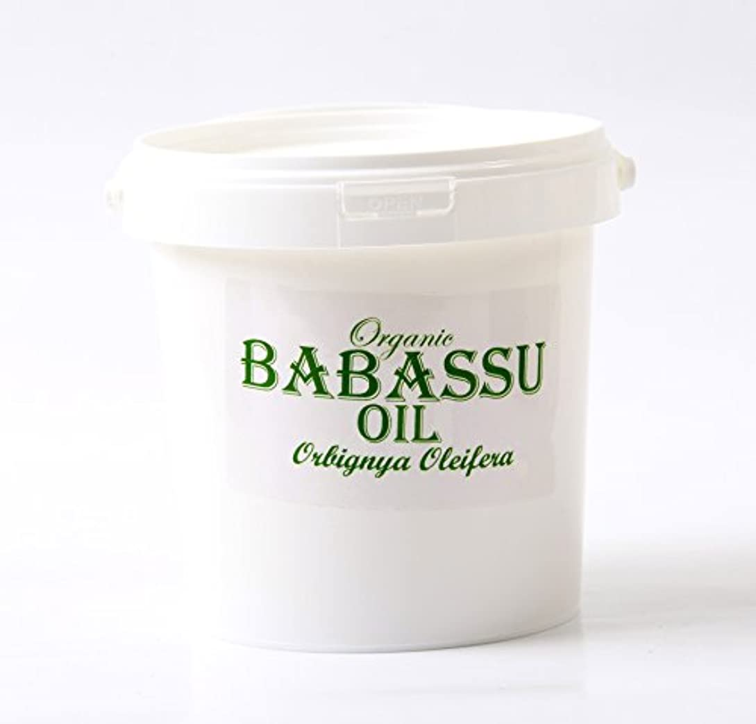退屈させるメロドラマティック工業化するMystic Moments | Babassu Refined Organic Carrier Oil - 1Kg - 100% Pure