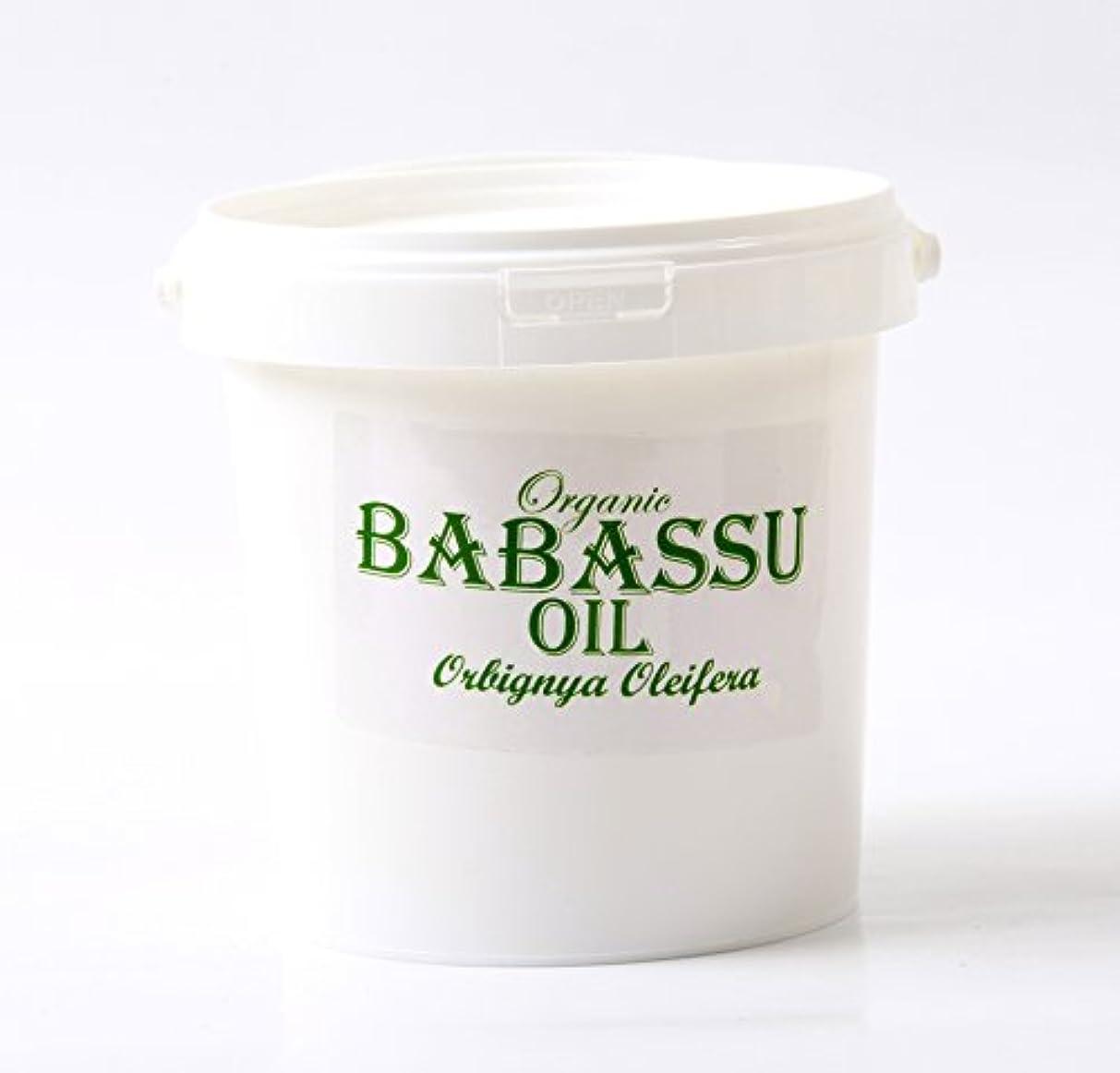 劇作家人工的な日記Mystic Moments | Babassu Refined Organic Carrier Oil - 1Kg - 100% Pure