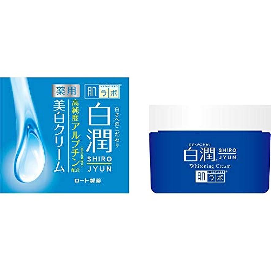 区画有料弾力性のある肌研(ハダラボ) 白潤 薬用美白クリーム 50g【医薬部外品】