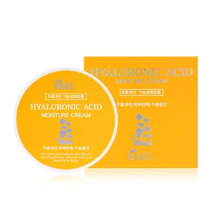 神社作者ふりをするイケル[韓国コスメEkel]Hyaluronic acid Moisture Cream ヒアルロン酸モイスチャークリーム100g [並行輸入品]