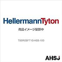 ヘラマンタイトン T50ROSFT10-HSB-100 (1袋) SN-