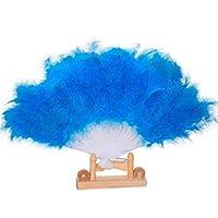 Esolom 21骨ファンダンス公演 羽根扇子 クラフト装飾 扇子 男性と女性 大人 21ファン扇子 レディ扇子 ダンスパフォーマンス扇子 ビンテージ扇子