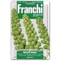 【FRANCHI社種子】【24/2】ブリュッセルスプラウツ mezzo nano