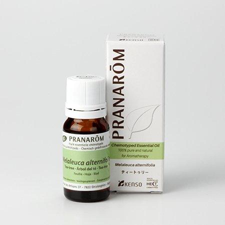 【ティートリー 10ml】→フレッシュでスパイシーな香り♪(森林浴系)[PRANAROM(プラナロム)精油/アロマオイル/エッセンシャルオイル]P-109