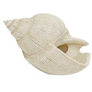 Solid Objet 花鉢 にもなる おしゃれ な インテリア オブジェ 置物 飾り シェル Bタイプ Sサイズ 4008292-01