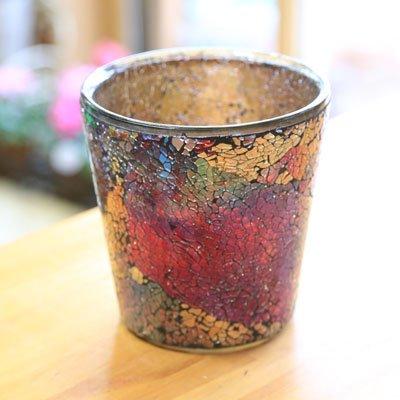 ガラス製鉢カバー:ボーテガラスポットb* 16cm(内径14.5)X16cm【5号鉢用】 (アムール)