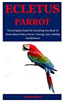 Ecletus  Parrot: The Complete Guide On Everything You Need To Know About Ecletus Parrot, Training, Care, Feeding And Behavior
