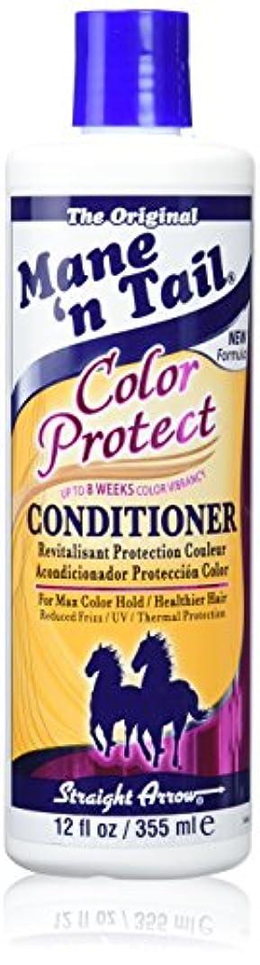 フォークディンカルビルこれらStraight Arrow Conditioner Color Protect 355 ml (並行輸入品)