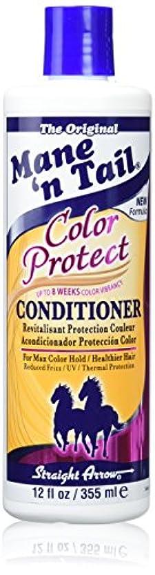 洗練された馬鹿魅惑するStraight Arrow Conditioner Color Protect 355 ml (並行輸入品)
