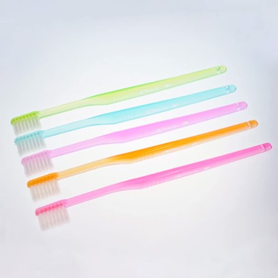 期待して啓発する宿題マルケン歯ブラシ 5本セット