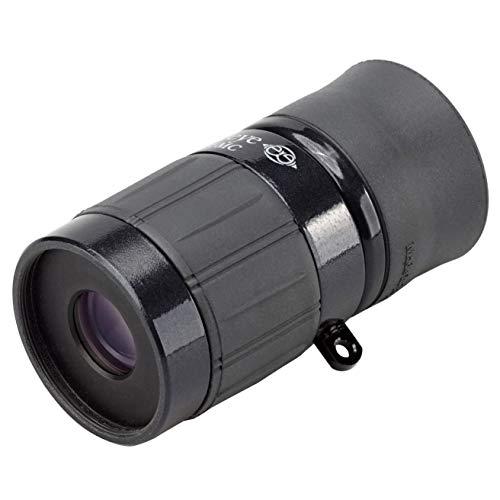 Kenko 単眼鏡 ギャラリーEYE 4×12 4倍 12mm口径 最短合焦距離19cm BLACK 日本製 001462