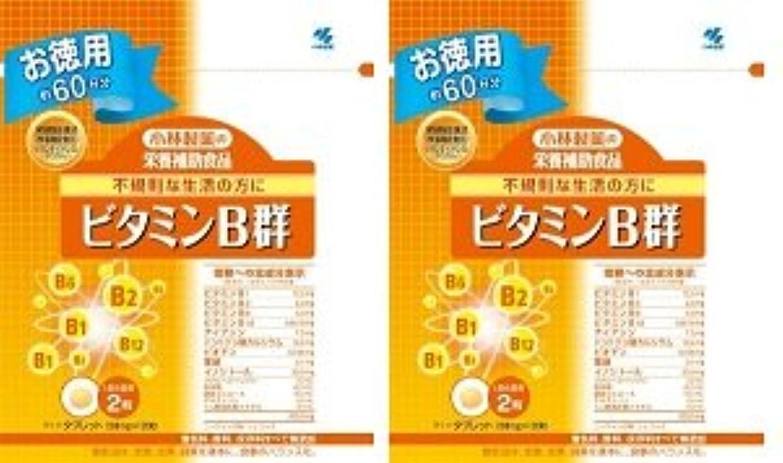 店主茎薄汚い小林製薬 小林製薬の栄養補助食品ビタミンB群120粒×2