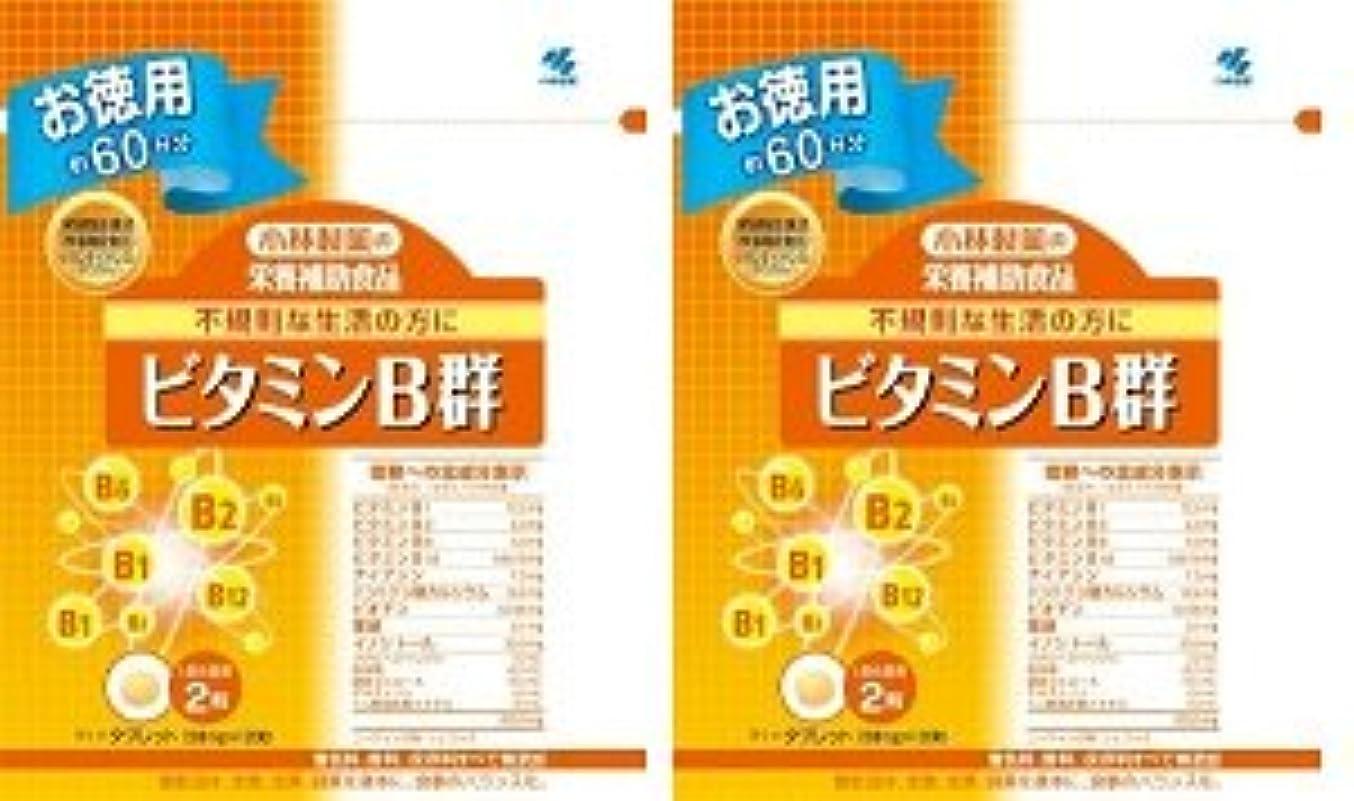 自伝爆弾区小林製薬 小林製薬の栄養補助食品ビタミンB群120粒×2