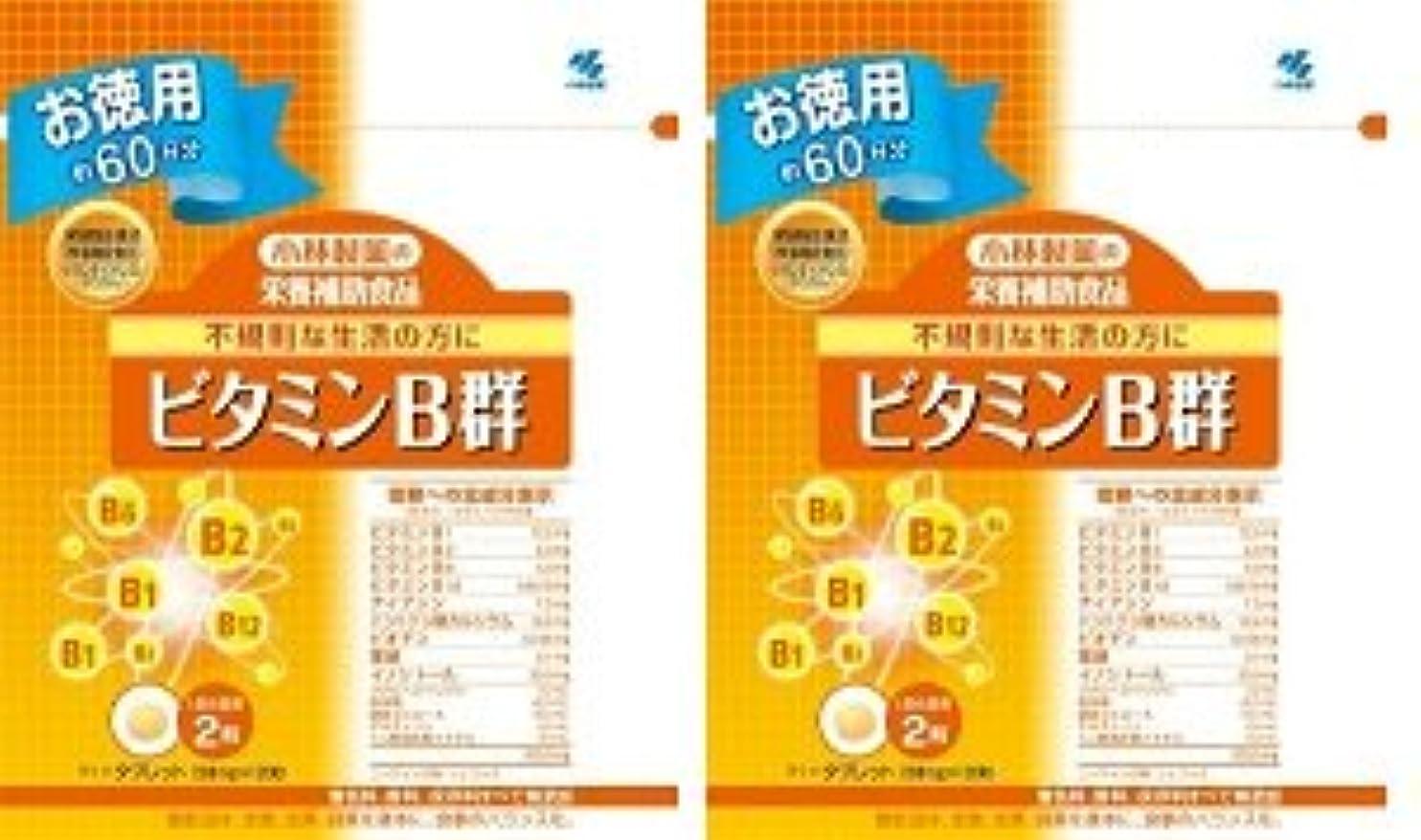 カード動くスチール小林製薬 小林製薬の栄養補助食品ビタミンB群120粒×2