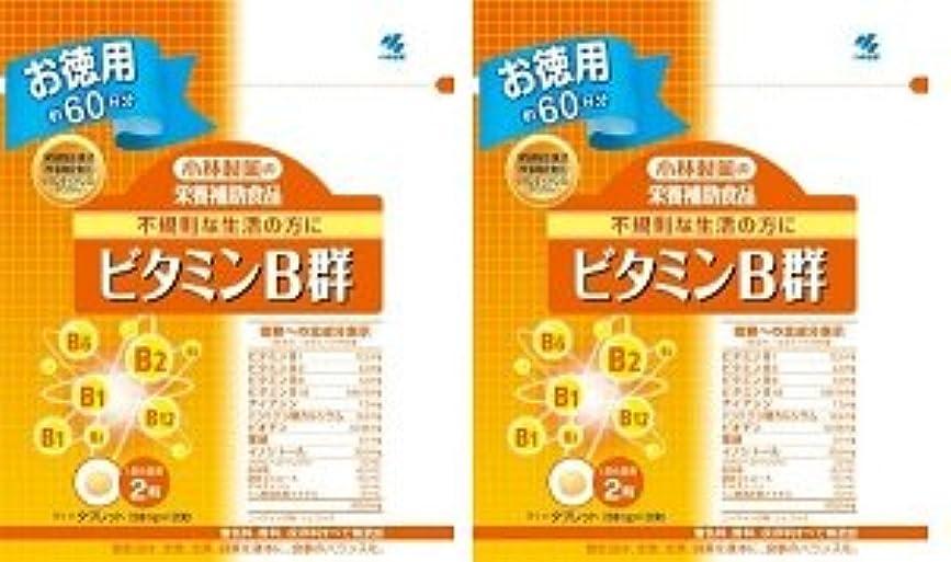 肺無限大明確な小林製薬 小林製薬の栄養補助食品ビタミンB群120粒×2