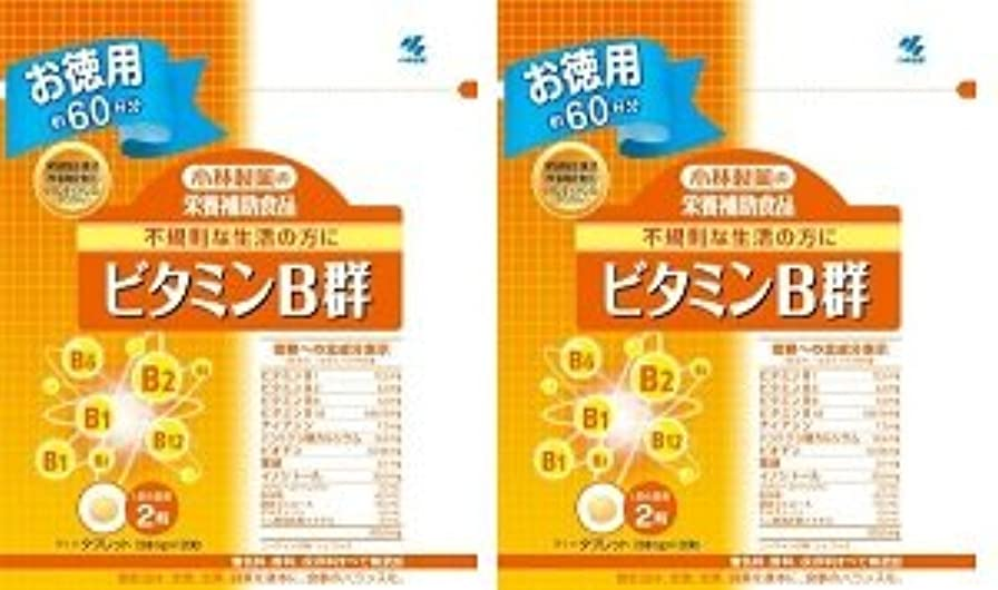 ダーリンマトリックススキル小林製薬 小林製薬の栄養補助食品ビタミンB群120粒×2