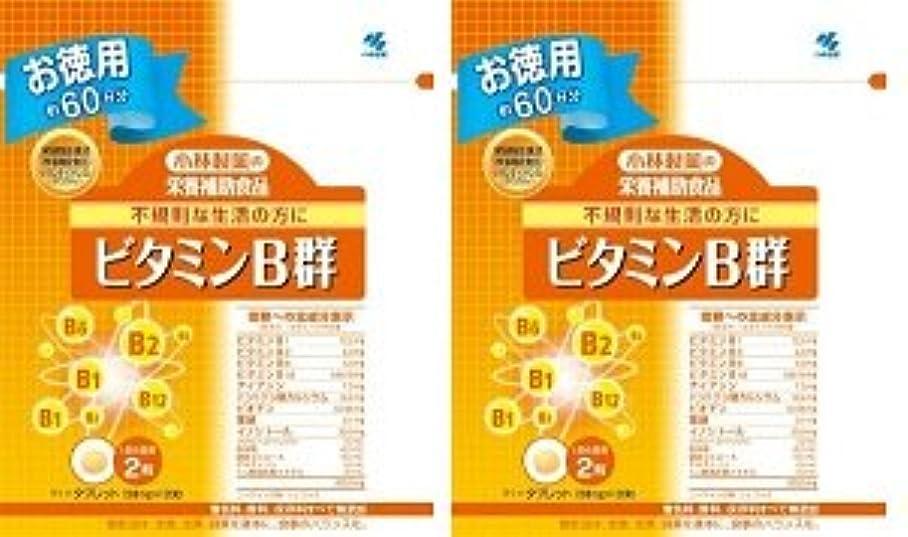 クレアシェードシェード小林製薬 小林製薬の栄養補助食品ビタミンB群120粒×2