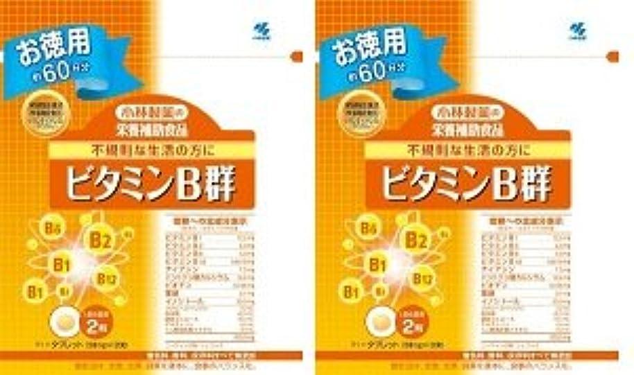 壊滅的なメタリックちっちゃい小林製薬 小林製薬の栄養補助食品ビタミンB群120粒×2