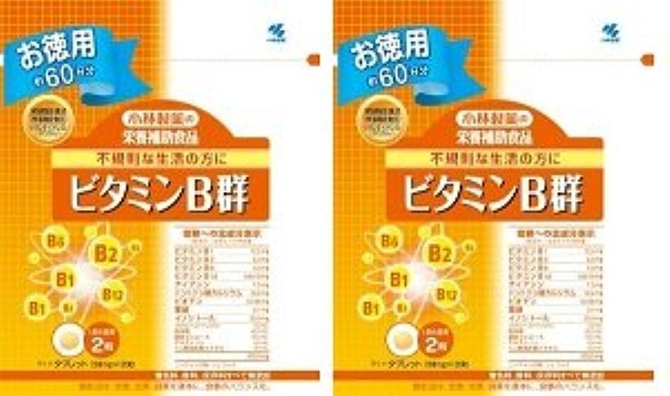 唯一色合い教師の日小林製薬 小林製薬の栄養補助食品ビタミンB群120粒×2
