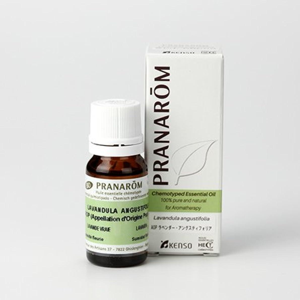 離れて実質的に鍔プラナロム AOP ラベンダーアングスティオフォリア 10ml (PRANAROM ケモタイプ精油)