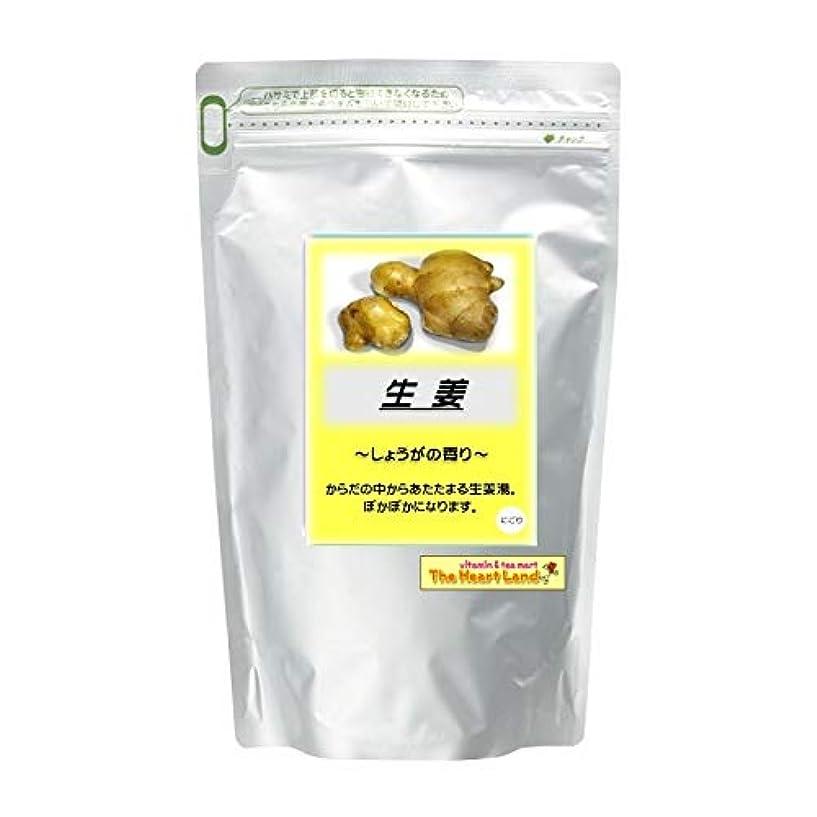 民間人政府証人アサヒ入浴剤 浴用入浴化粧品 生姜 2.5kg