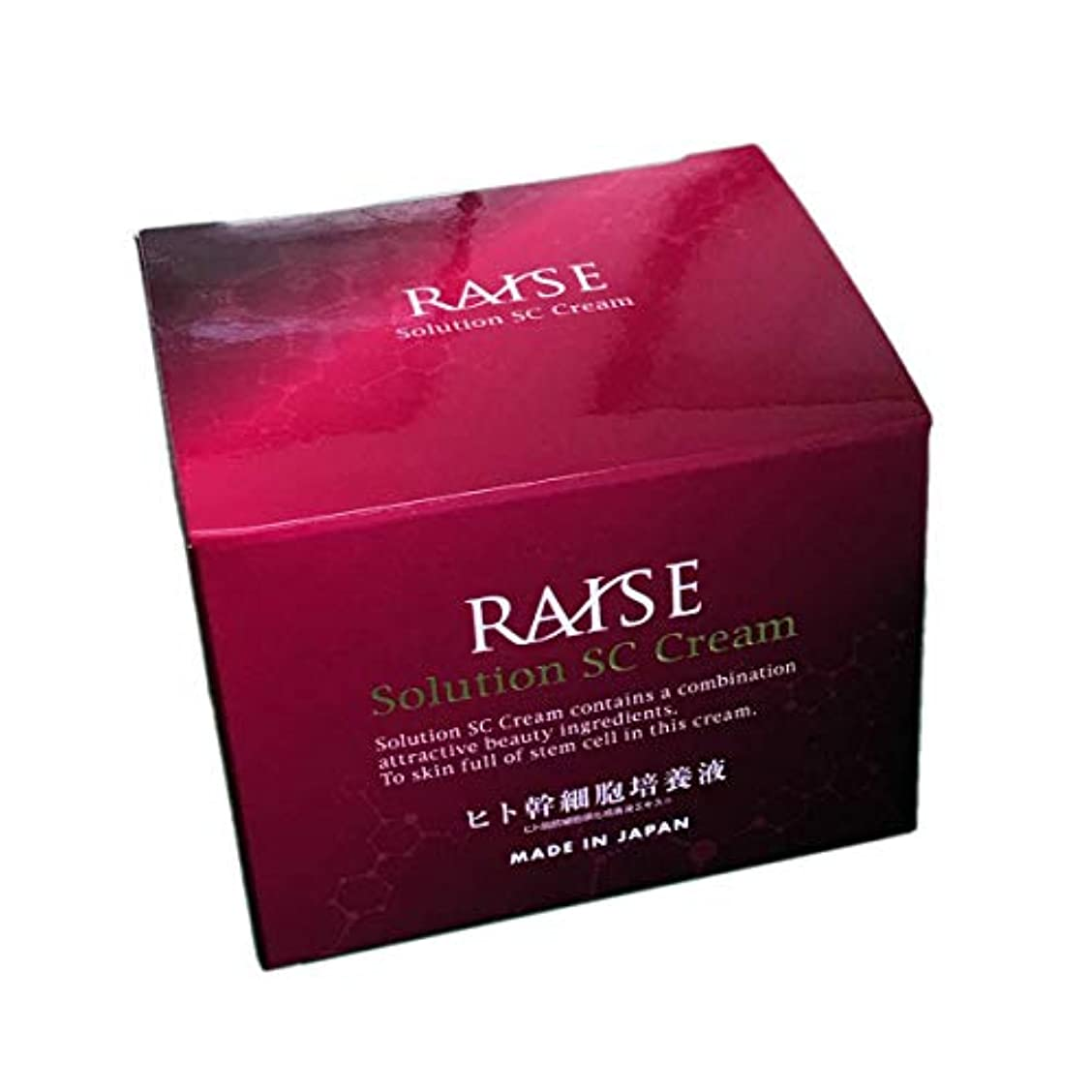 速報健全一節RAISE (レイズ) ソリューション SCクリーム 幹細胞+活性型FGF クリーム 30g