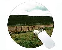 円形の賭博のマウスパッドの動物の雲の国はオフィスおよび家のための円形のマウスパッドをカスタマイズしました
