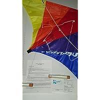 ヴィンテージflynasaur f36 Stunt Kite