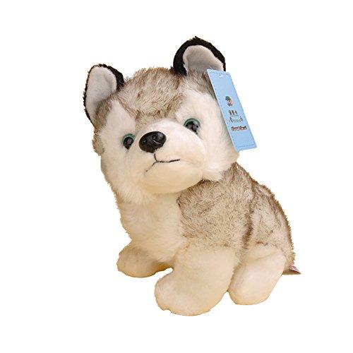 綺麗なブルーの目のシベリアンハスキーのぬいぐるみ プレゼントに (24cm)