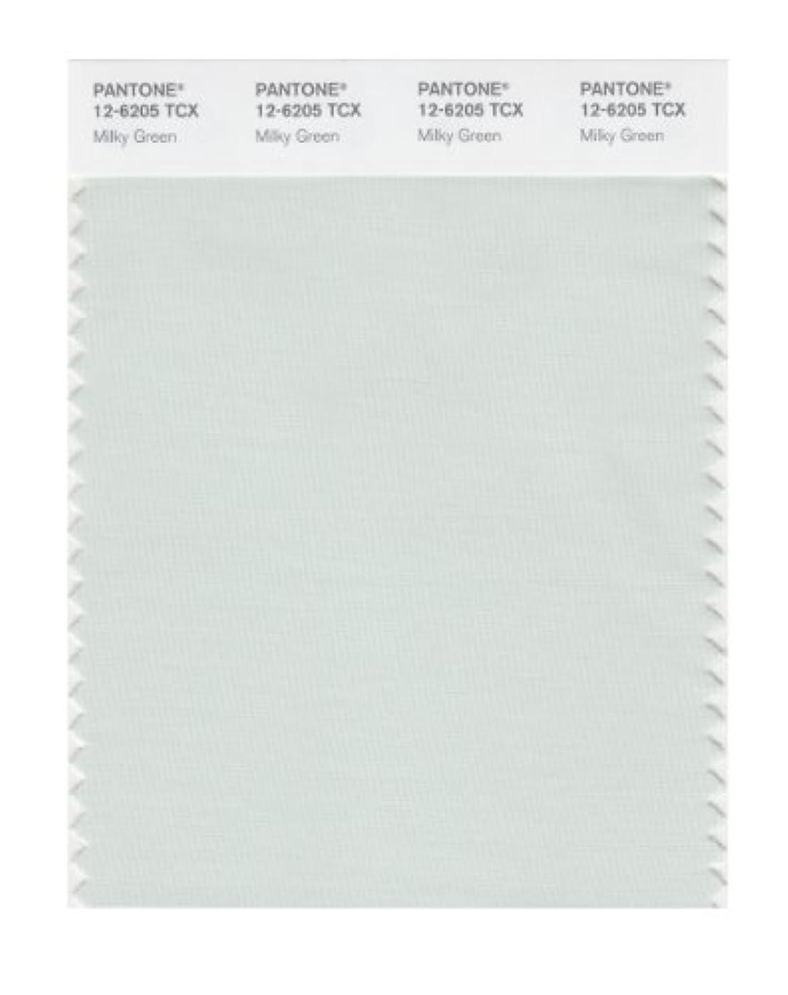 エスカレートくつろぎマウンドPantone色見本スマートカード 12-6205X 1
