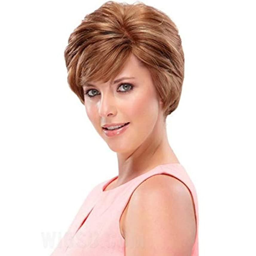 Kerwinner ふわふわストレートヘアウィッグ人工毛フルウィッグナチュラルに見える女性用耐熱性