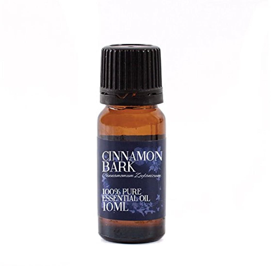 ヘルメットボイコット過言Mystic Moments   Cinnamon Bark Essential Oil - 10ml - 100% Pure