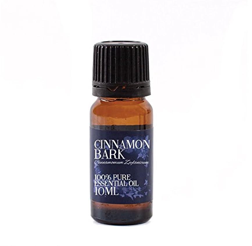ルーム励起逮捕Mystic Moments | Cinnamon Bark Essential Oil - 10ml - 100% Pure