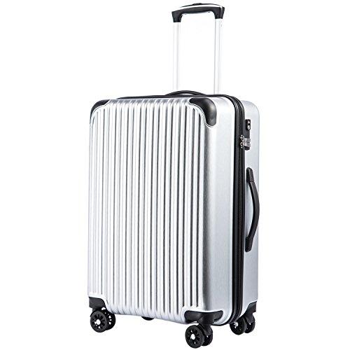 [クールライフ] COOLIFE スーツケース キャリーバッグダブルキャスター 一年安心保証 機内持込 ファスナー式 人気色 超軽量 TSAローク (M サイズ(24in), シルバー)