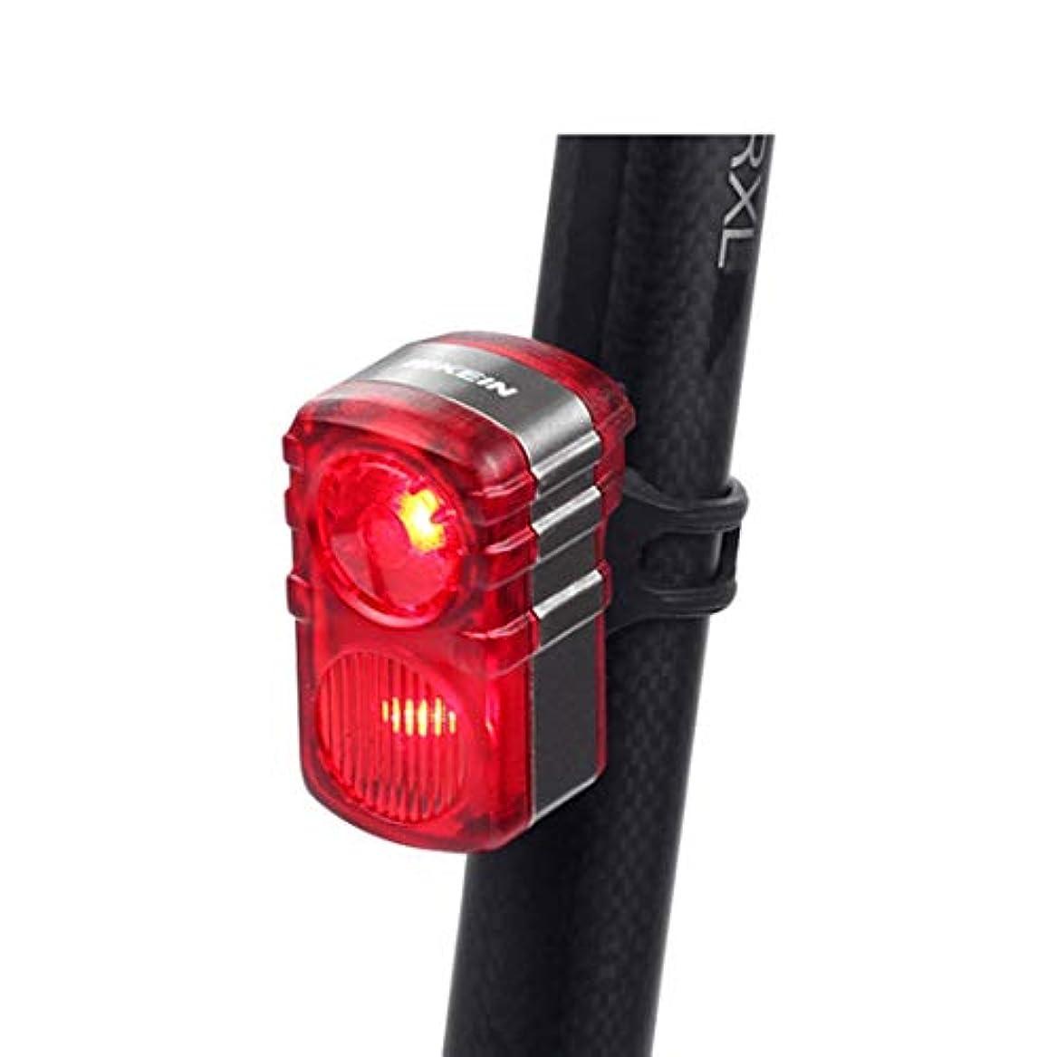 ホイットニー推進、動かす調停するDoyvanntgo マウンテンバイクの灯台USB充電夜間乗り物警告灯LED安全灯サイクリング装置 (Color : レッド)
