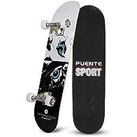 スケートボード コンプリートセット 31インチ 高精度 集中力や平衡感覚育成 大人 若者 子供を勧め 高品質ABEC-9ベアリング採用