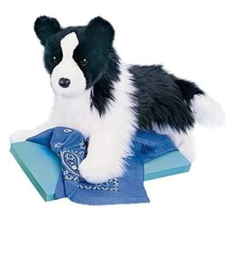 競う降雨を必要としています16インチChase Border Collie Dog Plush Stuffed Animal by Douglas