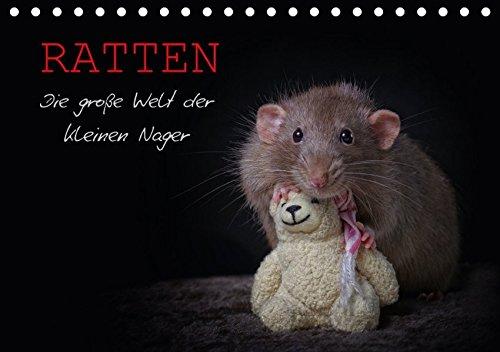 Ratten. Die grosse Welt der kleinen Nager (Tischkalender 2017 DIN A5 quer): Ein aussergewoehnlicher Tierkalender, der die schlauen Nagetiere in Ihrer niedlichsten Form zeigt. (Monatskalender, 14 Seiten )