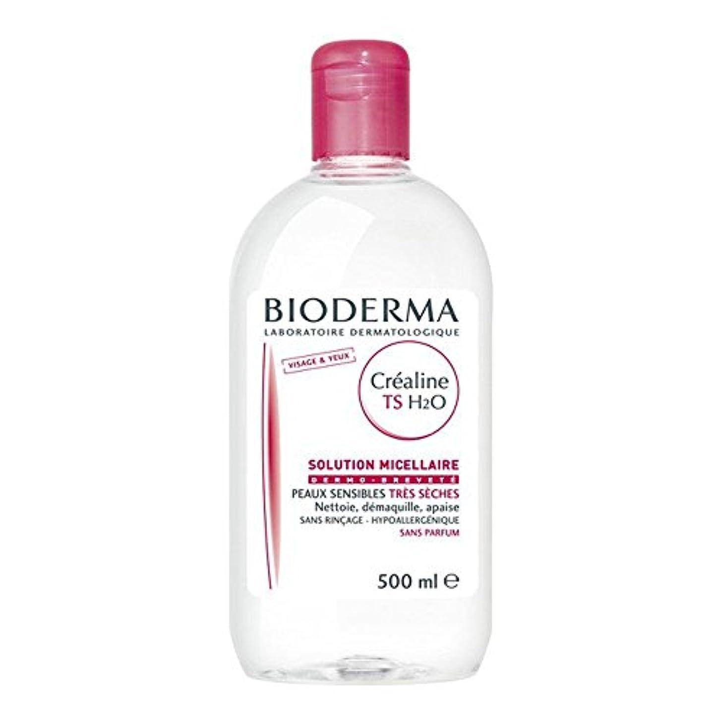 アテンダントメッシュドメインビオデルマ[BIODERMA]サンシビオH2O(エイチツーオー)TS 500ml