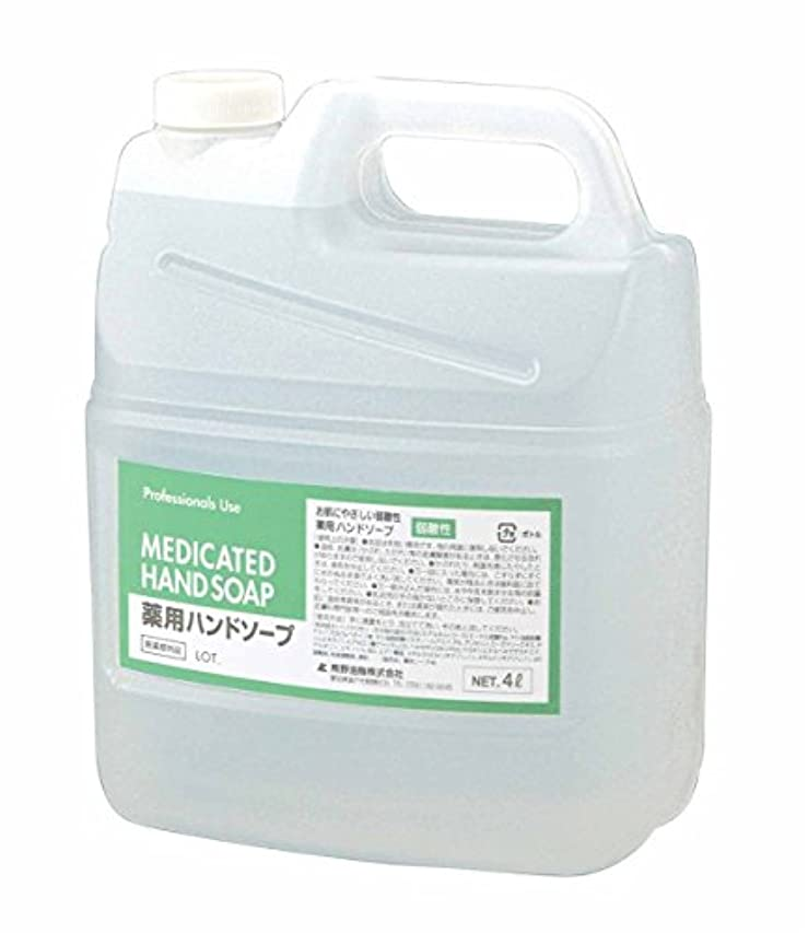 ディンカルビル守る神秘ファーマアクト 弱酸性薬用ハンドソープ 4L
