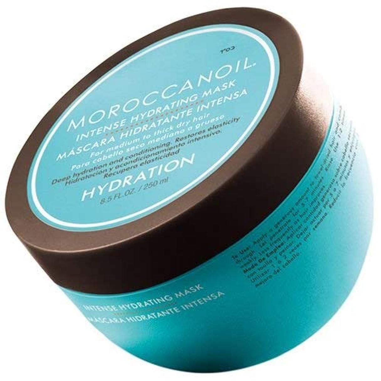 鉄ヒョウ助けてモロッカンオイル ウェイトレス ハイドレーティング マスク 250 ml