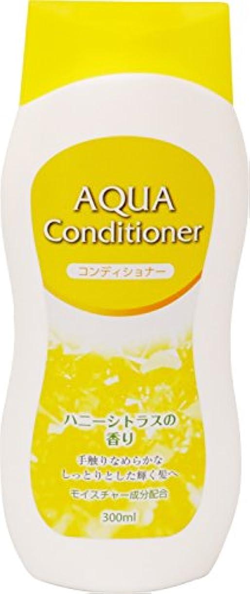 緊張する礼儀メール長良化学 AQUA コンディショナー 300ml